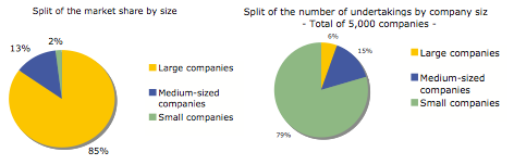 CEA European insurance market share by size and number of firms